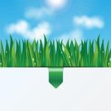 Fondo de Eco Foto de archivo libre de regalías