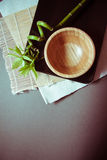 Fondo de Eco con el bambú verde Fotos de archivo libres de regalías