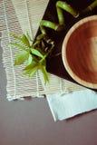 Fondo de Eco con el bambú verde Foto de archivo