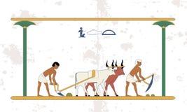 Fondo de Egipto antiguo Los campesinos con un equipo de toros aran el campo Antecedentes históricos Gente antigua imagen de archivo libre de regalías