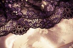 Fondo de encaje femenino de las ropas interiores Fotografía de archivo