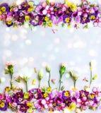 Fondo de flores Foto de archivo libre de regalías