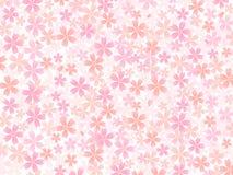 Fondo de flores rosadas Fotografía de archivo