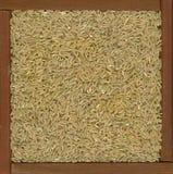 Fondo de grano largo del arroz moreno Imagen de archivo libre de regalías