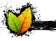 Fondo de Grunge con las hojas libre illustration