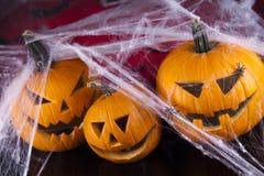 Fondo de Halloween con la red y la araña, calabaza Fotografía de archivo libre de regalías