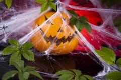 Fondo de Halloween con la red y la araña, calabaza Imagenes de archivo