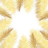Fondo de hoja de palma del vector del oro Fondo dibujado tropical del texto imágenes de archivo libres de regalías