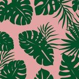 fondo de hojas tropicales conjuntamente con color rosado stock de ilustración