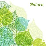 Fondo de hojas verdes estilizadas Imágenes de archivo libres de regalías