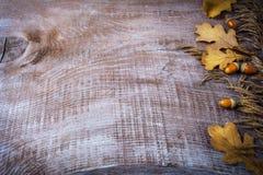 Fondo de la acción de gracias con la avena, la bellota y las hojas de la caída Imágenes de archivo libres de regalías
