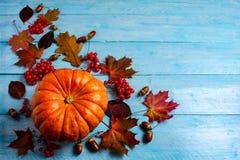 Fondo de la acción de gracias con la calabaza anaranjada madura en de madera azul Foto de archivo libre de regalías