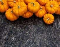 Fondo de la acción de gracias de la calabaza de otoño Fotografía de archivo