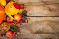 Fondo de la acción de gracias con calabaza amarilla, las manzanas, el serbal y la CA Foto de archivo libre de regalías