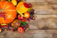 Fondo de la acción de gracias con la calabaza, calabaza amarilla, manzanas, pasto Fotografía de archivo