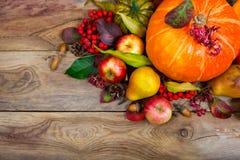 Fondo de la acción de gracias con la calabaza, manzanas, centerp de la tabla de la pera Fotografía de archivo libre de regalías