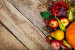 Fondo de la acción de gracias con la calabaza, manzanas, pera, espacio de la copia Fotografía de archivo libre de regalías