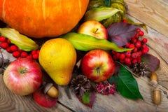 Fondo de la acción de gracias con la calabaza, manzanas, pera, pasto colorido Fotografía de archivo
