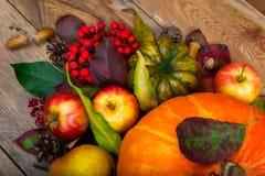 Fondo de la acción de gracias con la calabaza, manzanas, serbal, squas verdes Imagen de archivo libre de regalías
