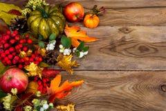 Fondo de la acción de gracias con la calabaza y las hojas de otoño verdes, poli Imagen de archivo