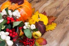 Fondo de la acción de gracias con el snowberry, la calabaza, las manzanas y grito Imagen de archivo libre de regalías