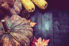 Fondo de la acción de gracias con la fruta y verdura Imagenes de archivo