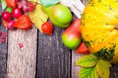 Fondo de la acción de gracias con las frutas y las calabazas del otoño en una tabla de madera rústica Opinión superior de la cose Imágenes de archivo libres de regalías