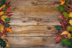 Fondo de la acción de gracias con las hojas en la tabla de madera vieja Imagen de archivo libre de regalías