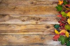 Fondo de la acción de gracias con las hojas en la tabla vieja Fotografía de archivo libre de regalías