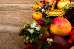 Fondo de la acción de gracias con las manzanas, el bérbero y las bayas blancas Imágenes de archivo libres de regalías