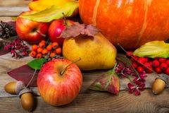 Fondo de la acción de gracias con las manzanas, la pera, las hojas de la caída y la bellota Foto de archivo