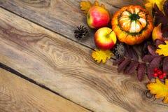 Fondo de la acción de gracias con los conos, manzanas, calabaza en TA de madera Foto de archivo