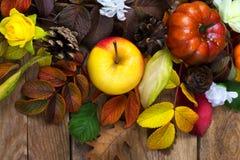 Fondo de la acción de gracias con la manzana, calabaza, rosa del amarillo, top VI Foto de archivo libre de regalías