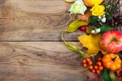 Fondo de la acción de gracias con la manzana, hojas, serbal Imagenes de archivo