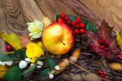 Fondo de la acción de gracias con la manzana y las rosas amarillas Imagen de archivo libre de regalías