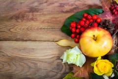 Fondo de la acción de gracias con la manzana y las rosas amarillas, espacio de la copia Fotografía de archivo libre de regalías