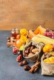 Fondo de la acción de gracias de la cosecha del otoño de la caída con maíz de la castaña de la manzana de la calabaza Fotos de archivo