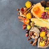 Fondo de la acción de gracias de la cosecha del otoño de la caída con maíz de la castaña de la manzana de la calabaza Imagen de archivo libre de regalías