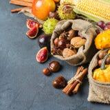 Fondo de la acción de gracias de la cosecha del otoño de la caída con maíz de la castaña de la manzana de la calabaza Fotos de archivo libres de regalías