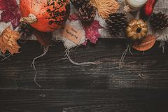 Fondo de la acción de gracias Decoración en la tabla de madera, visión superior de la acción de gracias Fotografía de archivo libre de regalías