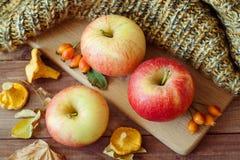 Fondo de la acción de gracias: Manzanas, setas y hojas caidas en fondo de madera Copie el espacio para el texto Víspera de Todos  Fotos de archivo libres de regalías