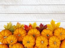 Fondo de la acción de gracias de la calabaza de otoño Fotografía de archivo libre de regalías