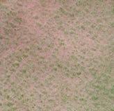 Fondo de la acuarela en colores del pantano con la textura de papel Fotos de archivo