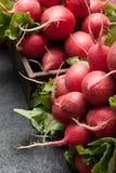 Fondo de la agricultura de los r?banos, verduras frescas fotografía de archivo