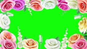 Fondo de la animación de la boda con las rosas florecientes almacen de video