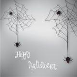 Fondo de la araña de Halloween Fotos de archivo libres de regalías