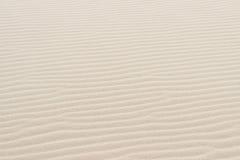 Fondo de la arena del desierto Imagen de archivo