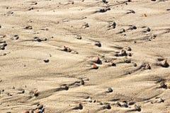 Fondo de la arena y del guijarro multicolor Fotografía de archivo libre de regalías