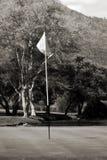 Fondo de la asta de bandera, verde y ocupado Fotografía de archivo