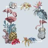 Fondo de la bandera del verano con las flores tropicales, las frutas exóticas y los pájaros del flamenco stock de ilustración